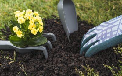 What Gardening Supplies Do Beginners Need?