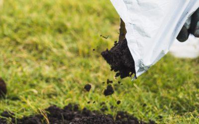 7 Ways Mushroom Compost Will Improve Your Soil