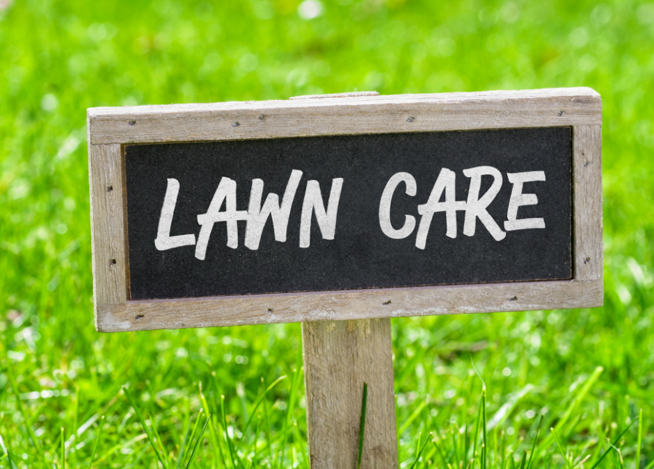 For a Green and Gorgeous Lawn, Top Dress Your Lawn!